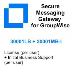 30001LB + 30001MB-I